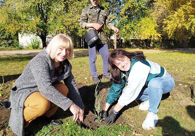 Посади дерево на честь свого селища