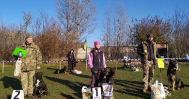 Змагання собаководів