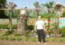 Пластикові пальми від Василя Рудокваса
