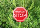 Розповсюдження небезпечної рослини