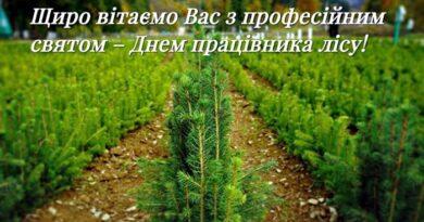 19 вересня – День працівників лісового господарства
